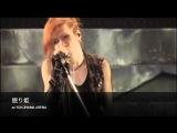 Acid Black Cherry  「2010 Live Re:birth」ダイジェスト映像