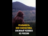 Реальность или Фантастика? Снежныйчеловек из России
