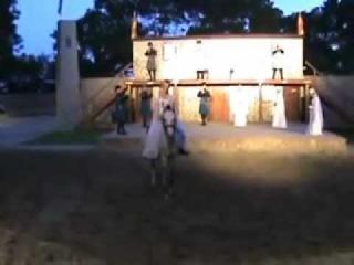 Лошади тоже умеют танцевать лезгинку!
