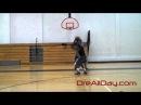 Dre Baldwin: 1-On-1 Game Clip 114 | Quickness Advantage Hesitation DreAllDay Pullup Jumpshot