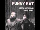 Peter Brötzmann & Shoji Hano - Snake And Sheep