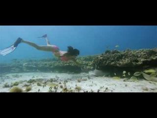 Blue Theme - Blue (2009) *BluRay* - Full Song - Hindi Music Video