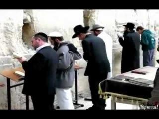 Пророк Мухаммад(с.а.в.) в Торе и Библии
