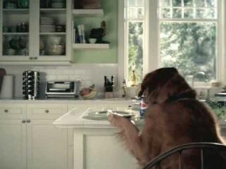 Прикольный рекламный ролик про собаку