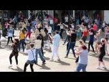 Moky Flash Mob Carlisle City Centre - Sam and the Womp Bom Bom