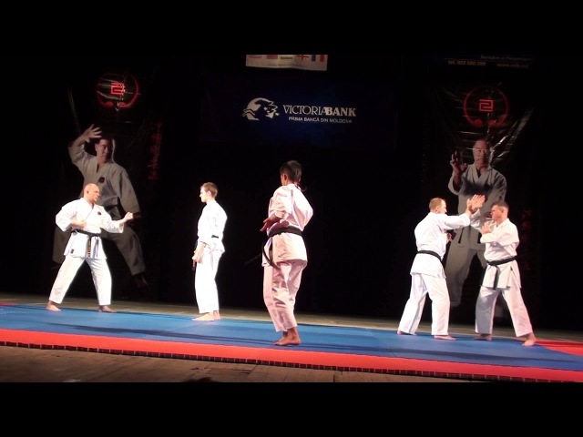 Bunkai kata Sepai demonstrate instructor IOGKF Russia