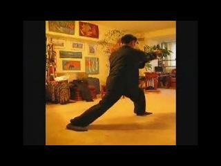 Тяньчжушаньский медицинский цигун - 16 Форм Тайцзи
