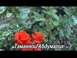 MAFTUN - ТАМАННОИ АБДУМАЛИК 2012