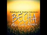 БэбиSкул &amp Andrey Vakulenko -- Весна (Alex Curly Remix)
