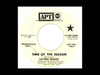 Lectric Woods - Time Of The Season (ABC) (The Zombies Instrumental Cover)