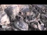 Новости Перми: поиски в Калужской области