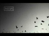Nine Inch Nails - Ghosts II - 11