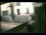 Japan - A millions suffocated in gas chambers The fate of stray dogs Japanese.mp4