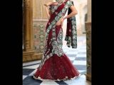 Exotic Net Sarees by Akarshan Designs