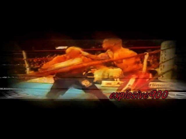 Roy Jones Jr Highlight 2011 ''Can't Be Touched''