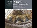 JS Bach, Toccata, Adagio Fugue in C BWV 564, 2.