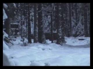 Охота на кабана с подхода.f4v