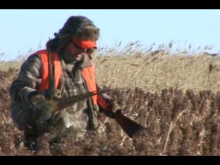 Unbelievable Pheasant Hunt Warne Ranch Pierre South Dakota