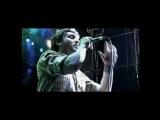 La Vela Puerca - DVD - Mi Semilla