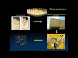Видео презентация бонусной программы EMGoldex