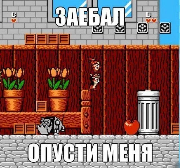 друг по: