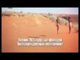 Голтис - Интервью после практики 43 дневного голодания — смотреть онлайн видео, бесплатно!