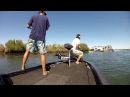 """Hard Work"" California Delta Fishing: Punching with Missile Baits and Paycheck Baits"