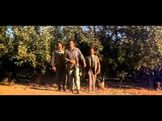 Phenomenon - John Travolta Mystery Fantasy Romance Full mOvie with arabic danish english subtitles