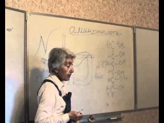 М.В. Оганян, большая лекция, часть 2, Одинцово 2010)