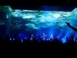 Свобода Концерт ДДТ 18 мая 2012 года в Юбилейном