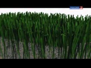 Технология спорта : Футбол (1-ая часть )