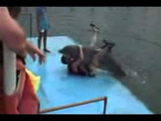 Дельфин ебёт девушку фото 531-825