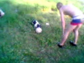 Дружок возвращение (Собака играет в футбол)