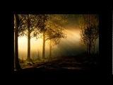 Victor Davies Feat. Bebel Gilberto - Conmigo (With Me)