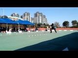 제 31회 회장배 전국 학교 및 실업팀 대항 롤러경기 대회 / 유진성