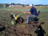 копаем картошку мотоблоком зубр