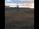 stesha_sn video