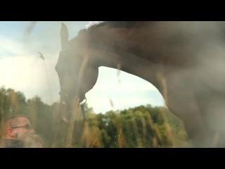Поющая лошадка. Свадебный киносезон 2012г