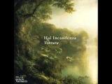 Hal Incandenza - Ventura (Dub Version)