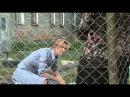 Гражданка начальница. Продолжение. 9 серия (2013)
