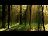First State feat Sarah Howells - Brave (Original Mix).avi