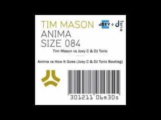 Tim Mason vs Joey C & DJ Torio - Anima vs How It Goes (Joey C & DJ Torio Vocal Bootleg)