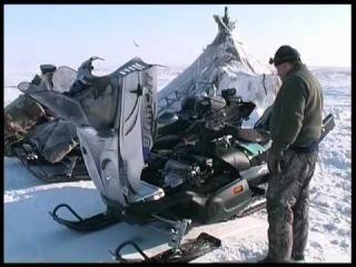 Охота на волков в Арктике на снегоходах Ямал 2005