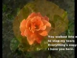 Хулио Иглесиас и Долли Партон дуэт - When You Tell Me That You Love Me (Julio Iglesias feat Dolly Parton)