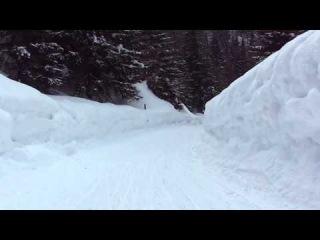 Швейцария. Катание на санках с Боооольшой горы