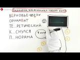 ЕГЭ. Русский Язык. Разбор задачи №8.