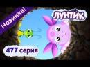 Лунтик - 477 серия. ТАЙНЫЙ КОЛОДЕЦ. Новые серии 2016. Мультик Игра для детей .