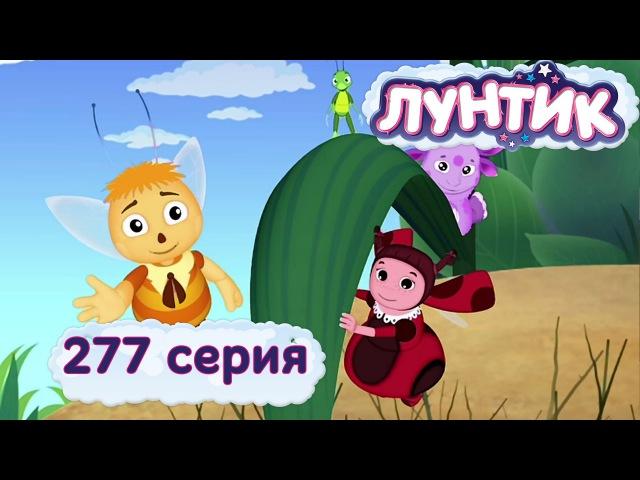 Лунтик и его друзья - 277 серия. Проучили