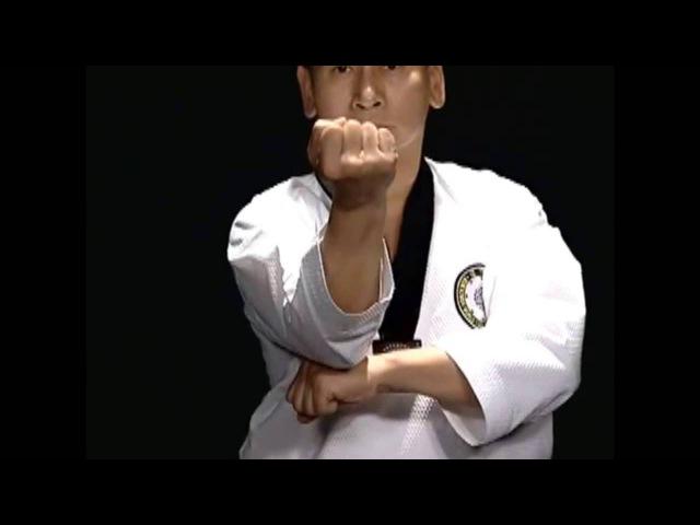 Basic Motions - CHIGI - Taekwondo Technics in English [HD]