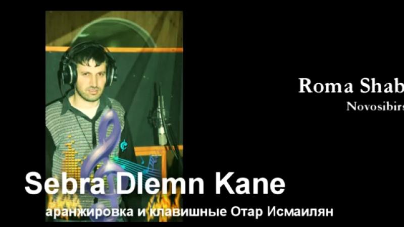 Рома Шабабян Sebra Dlemn Kane 2012